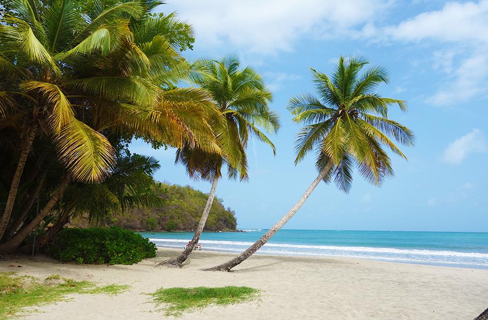 Yachtcharter Segeltörn Segelurlaub Yachturlaub Grenada Karibik Antigua St Lucia Guadeloupe Exumas © Caribbean Journal