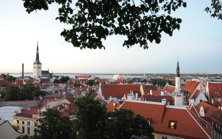 Blick auf die Hauptstadt Tallinn