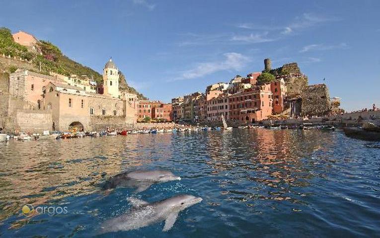 Blick auf Vernazza mit Delfinen