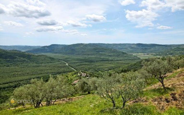 Landschaft von Istrien