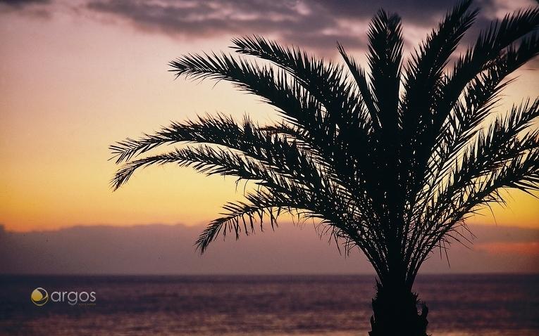 Sonnenuntergang am Playa de las Américas in Arona