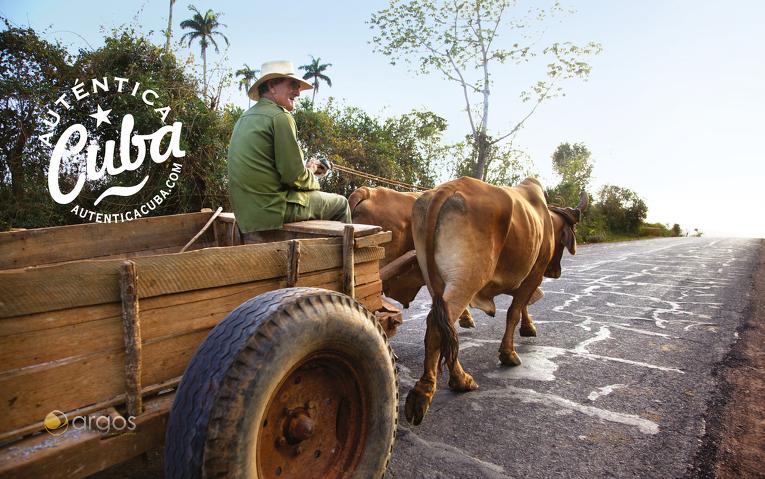 Unterwegs mit dem Ochsenkarren in der Provinz Pinar del Rio
