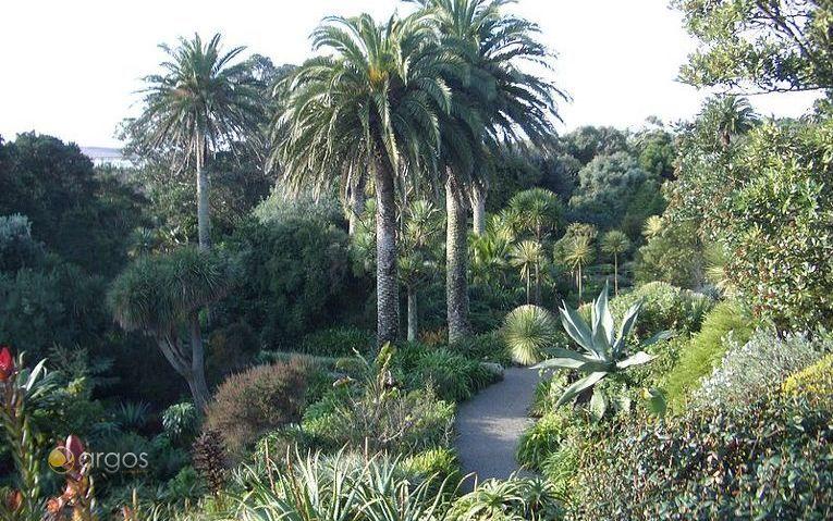 Abby Gardens - Tresco