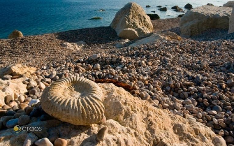 Fossiliensuche an der Jurassic Coast Charmouth, Dorset