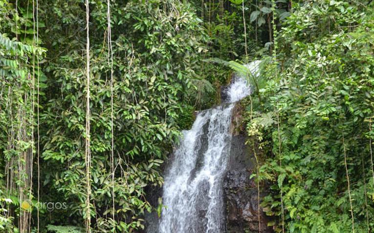 Wasserfälle - Tahiti