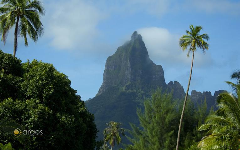 Vulkanische Berge der Insel Moorea