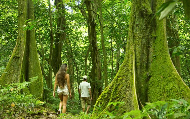 Exotisches Hinterland von Mooera