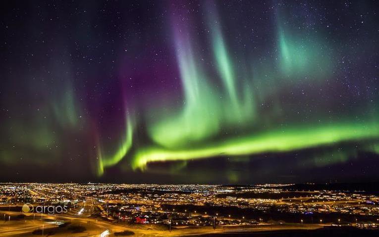 Polarlichter über Reykjavik / Island