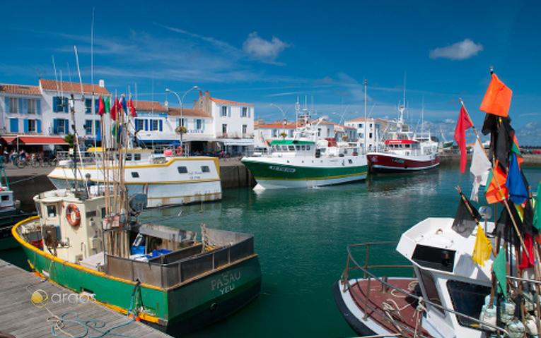 Port de Meul, Ile d'yeu