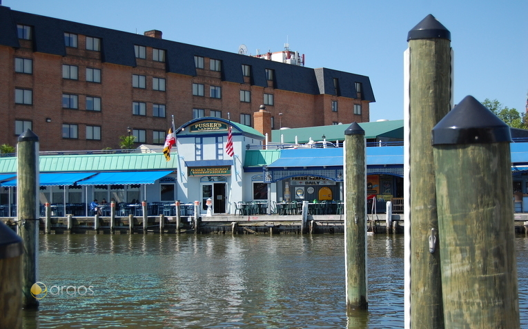 Pussers in Annapolis, Maryland