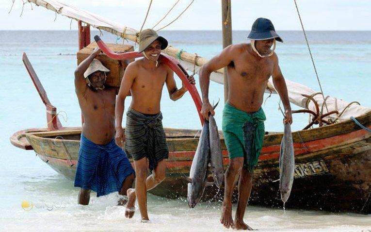 Maledivische Thuna-Fischer
