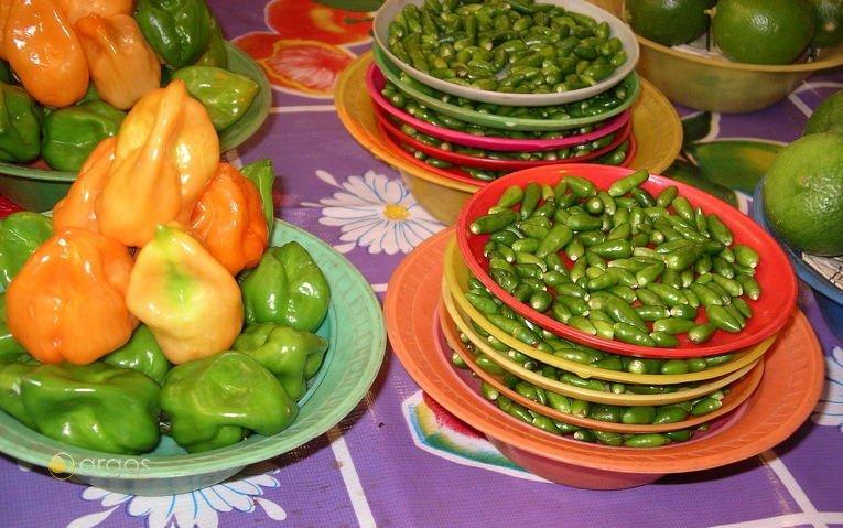 Auswahl an Mexikanischen Chilisorten