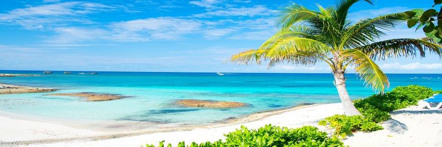 Neuer ARGOS-Katalog für Europa.