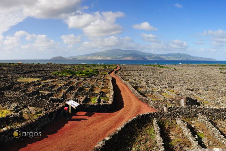 Insel Pico
