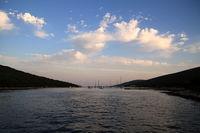 Insel Unije