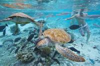 Tupai-Atoll